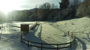 Abschnittsleistungsbewerb Weidenburg @ Weidenburg | Mitschig | Kärnten | Österreich